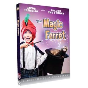 magicferret-3d-art